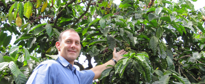 ICP (International Coffee Partnership)